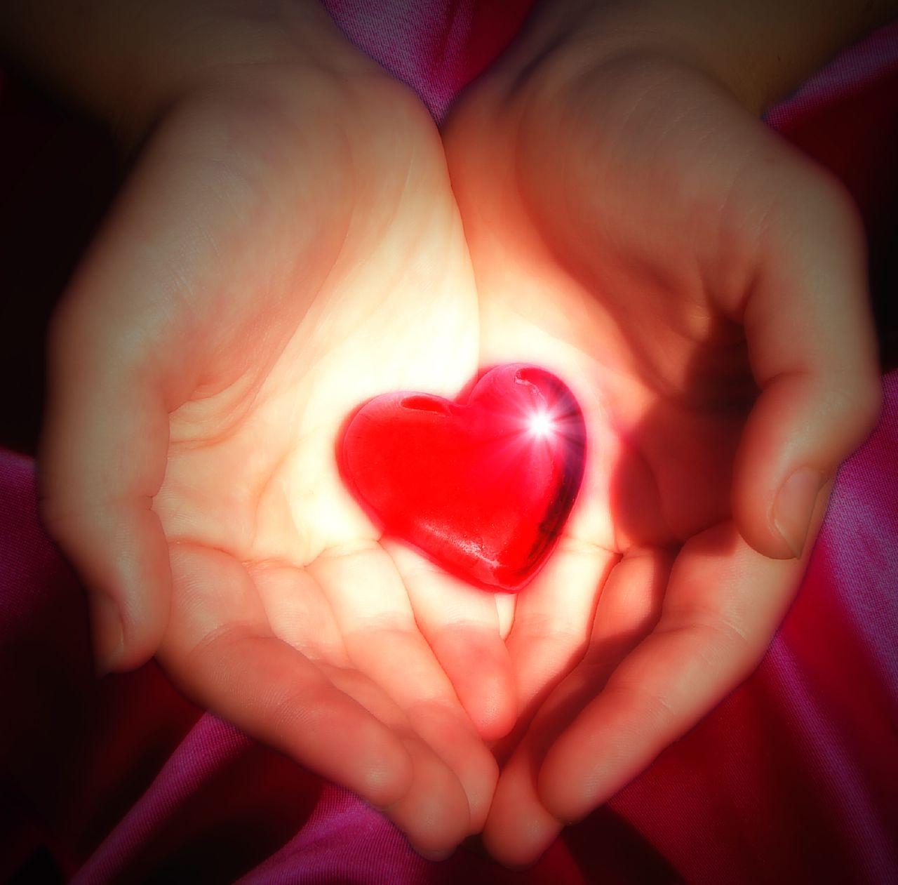 Тепло сердец