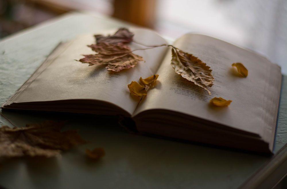 «Золотая долина» (литературный клуб)